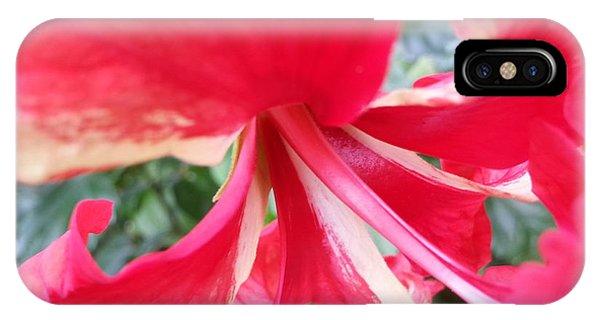 Macro Beauty IPhone Case