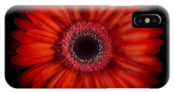 Macro Photograph Of An Red And Orange Gerbera Daisy Against A Black Background IPhone Case