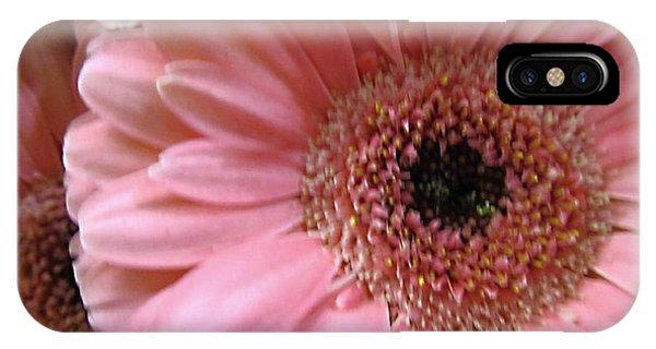 Macro Pink Gerbera Daisies IPhone Case
