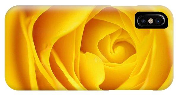 Macro Yellow Rose Phone Case by Patrick Dinneen