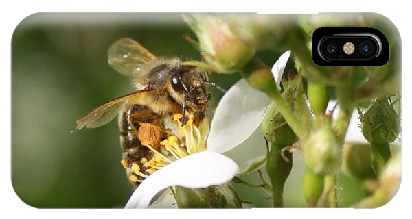 Mad Honeybee IPhone Case