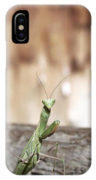 Madame Mantis IPhone Case
