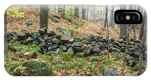 Sherri iPhone Case - Madame Sherri Forest - Chesterfield New Hampshire Usa by Erin Paul Donovan