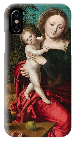 Mary Mother Of God iPhone Case - Madonna And Child by Master of the Parrot