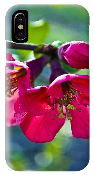 Magenta Blooms IPhone Case