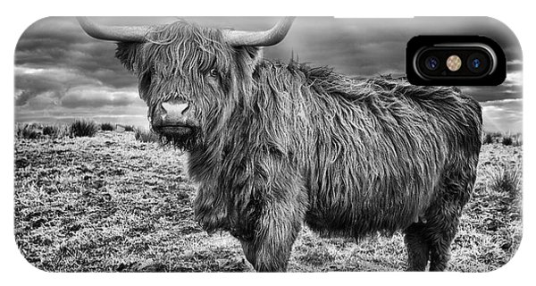 Magestic Highland Cow IPhone Case