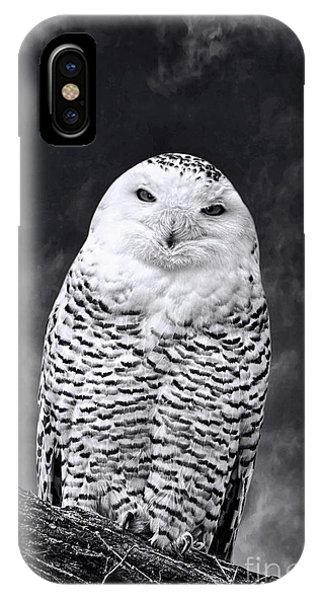 Magic Beauty - Snowy Owl IPhone Case