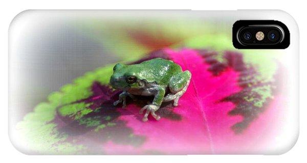 Magic Carpet Coleus Leaf IPhone Case
