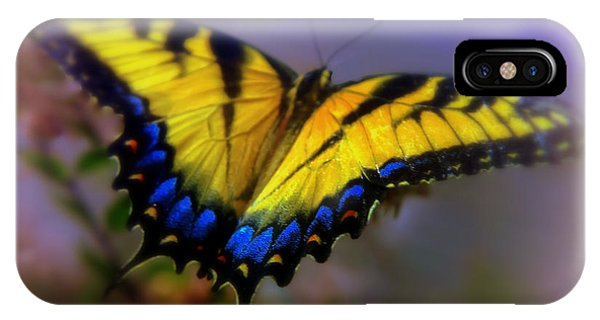 Pollination iPhone Case - Magic Of Flight by Karen Wiles