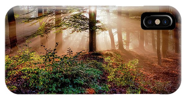 Sun Rays iPhone Case - Magical Forest by Peter Bijsterveld