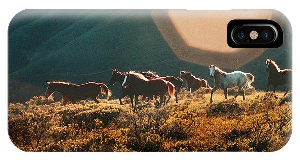 Magical Herd IPhone Case