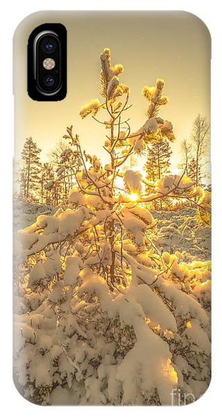 Magical Moments In The Middle Of January IPhone Case