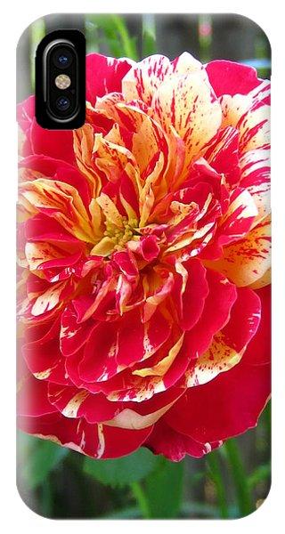 Magical Rose IPhone Case