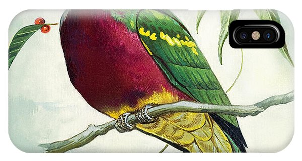 Magnificent Fruit Pigeon IPhone Case