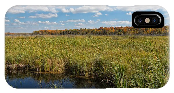 Magnificent Minnesota Marshland IPhone Case