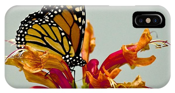 Magnificent Monarch IPhone Case