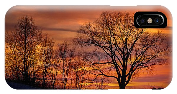 Magnificent Morning IPhone Case