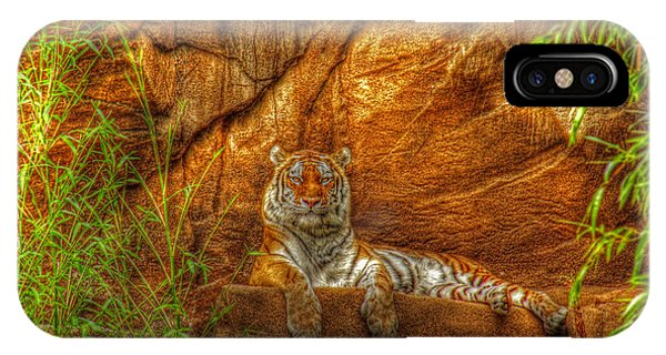 Magnificent Tiger Resting IPhone Case
