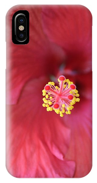 Magnolia 5  IPhone Case