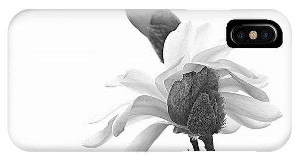 Magnolia Bloom 1 IPhone Case