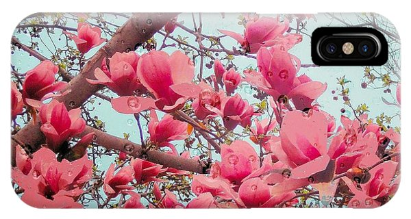 Magnolia Blossoms In Spring IPhone Case