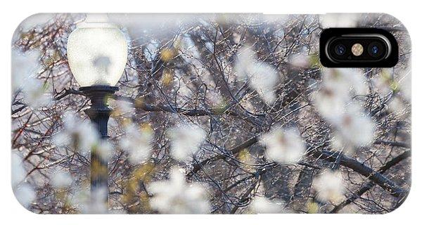 Magnolia Impression 1 IPhone Case