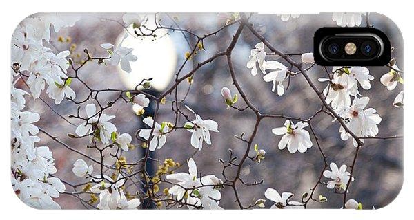 Magnolia Impression 2 IPhone Case