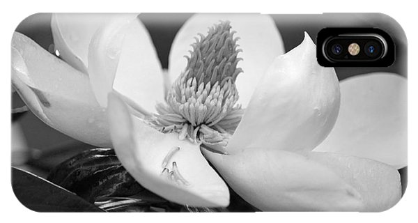 Magnolia In May - Black And White IPhone Case