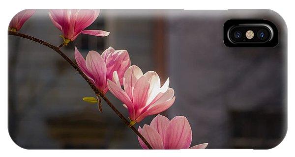 Magnolia's Descent IPhone Case