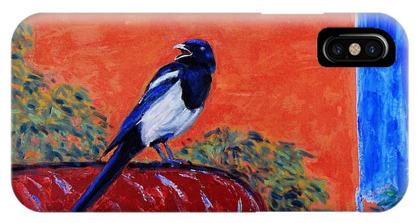 Magpie Singing At The Bath IPhone Case
