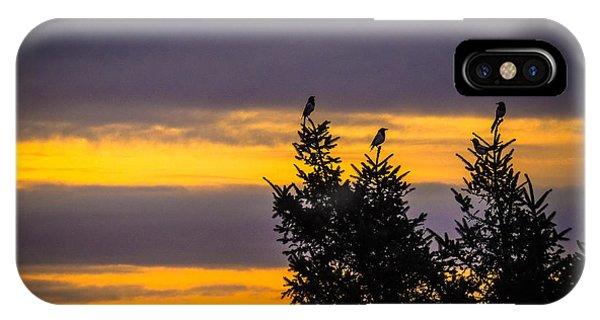 Magpies At Sunrise IPhone Case