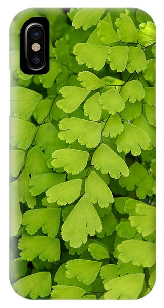 Maidenhair Fern IPhone Case