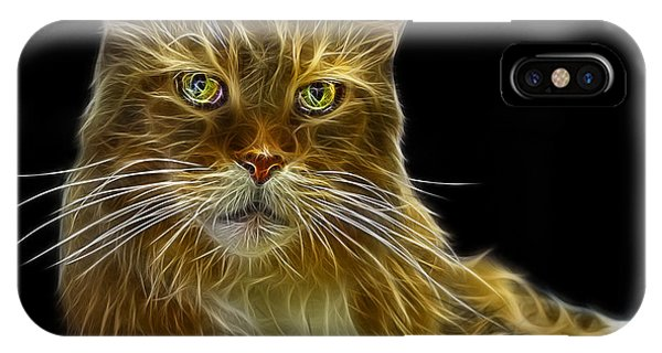 IPhone Case featuring the painting Maine Coon Cat - 3926 - Bb by James Ahn