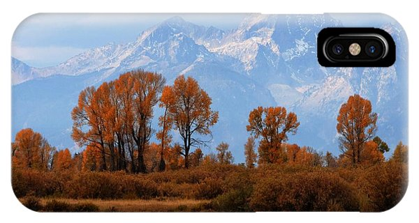 Majestic Backdrop IPhone Case