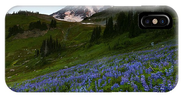 Alpine Meadows iPhone Case - Majestic Meadow by Mike Dawson