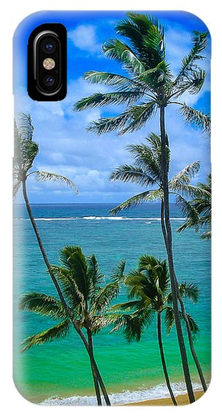 Majestic Palm Trees IPhone Case