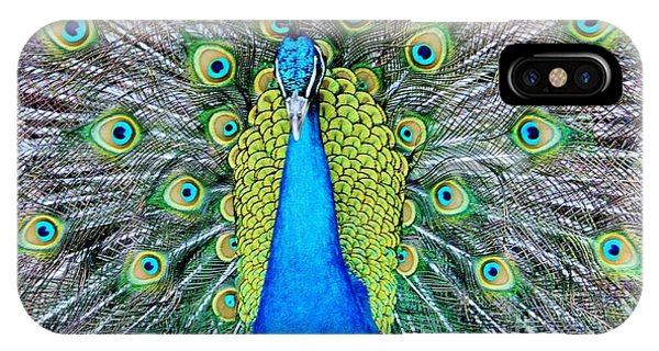 Male Peacock IPhone Case
