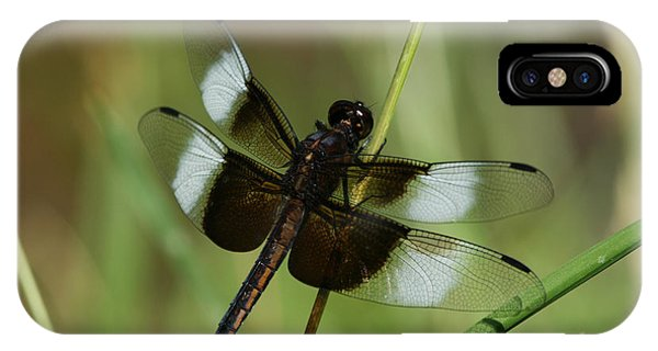 Male Widow Skimmer Dragonfly IPhone Case