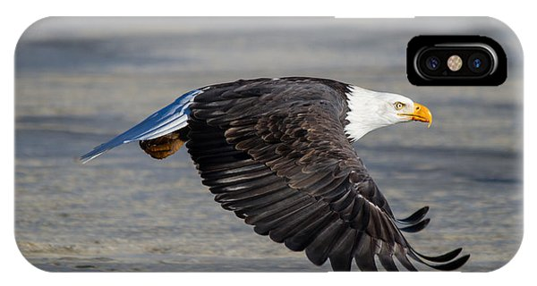 Male Wild Bald Eagle Ready To Land IPhone Case