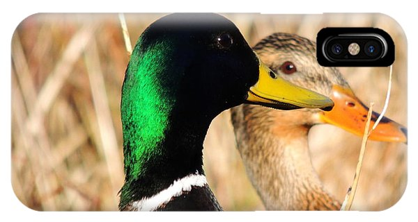 Mallard Couple IPhone Case