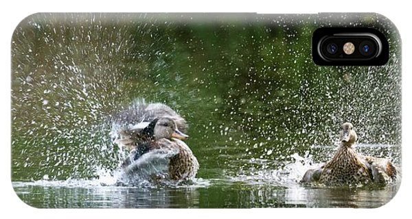 Mallard Ducks Phone Case by Steve Allen/science Photo Library