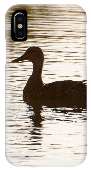 Mallard Silhouette IPhone Case