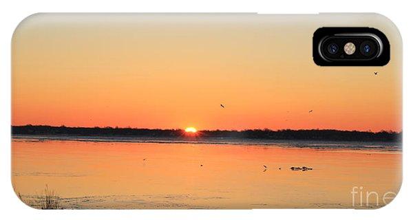 Mallards At Sunrise IPhone Case