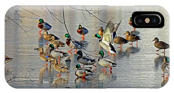 Mallards On A Frozen River IPhone Case