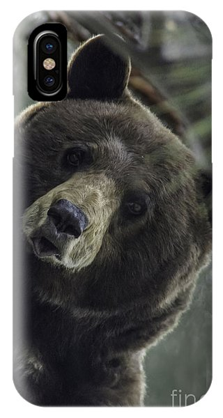 Mama Bear IPhone Case