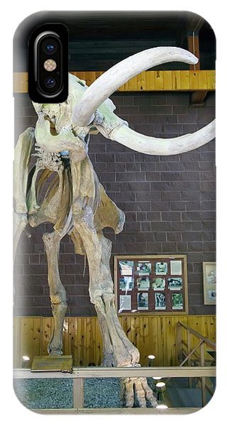Mammoth Hot Springs iPhone Case - Mammoth Skeleton by Jim West