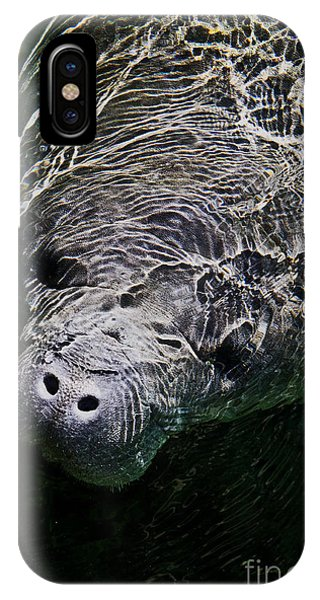 Manatee 01 IPhone Case