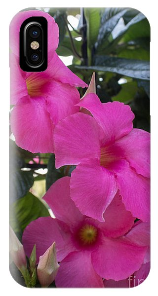 Mandevilla Beauty IPhone Case