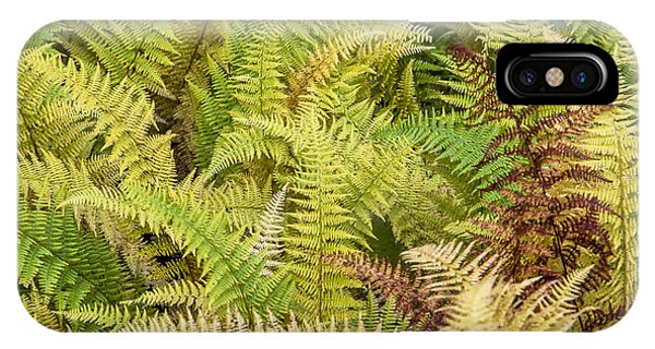 Mane Fern IPhone Case
