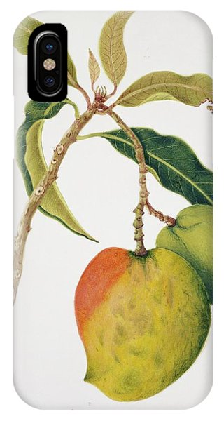 Mango iPhone Case - Mango Fruits by Natural History Museum, London/science Photo Library